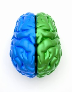 bigstock_Blue_End_Green_Brain_9922868