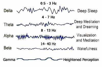 sound frequencies and the brain